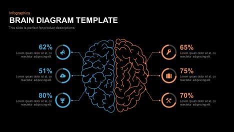 Brain Diagram Template