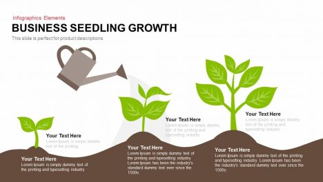 business seedling growth