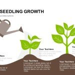 business seedling growth PowerPoint template