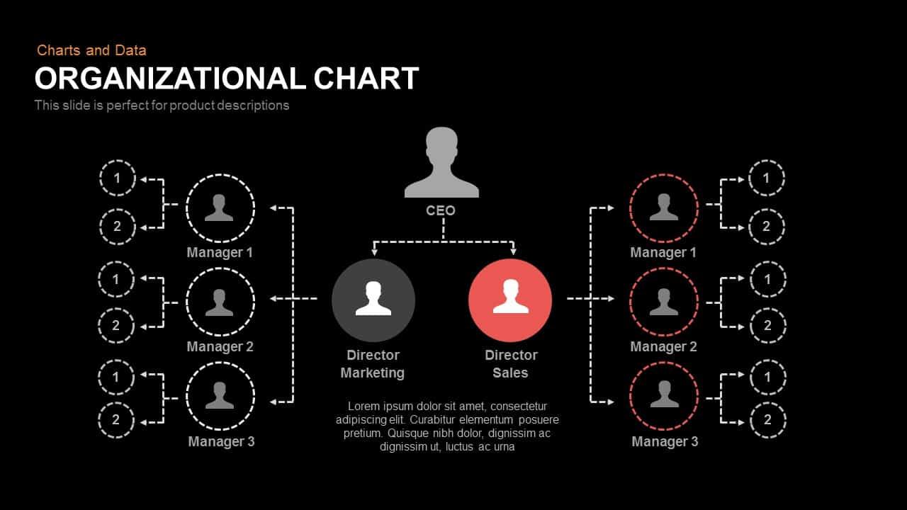 Organizational chart powerpoint keynote template organizational chart powerpoint and keynote template toneelgroepblik Images