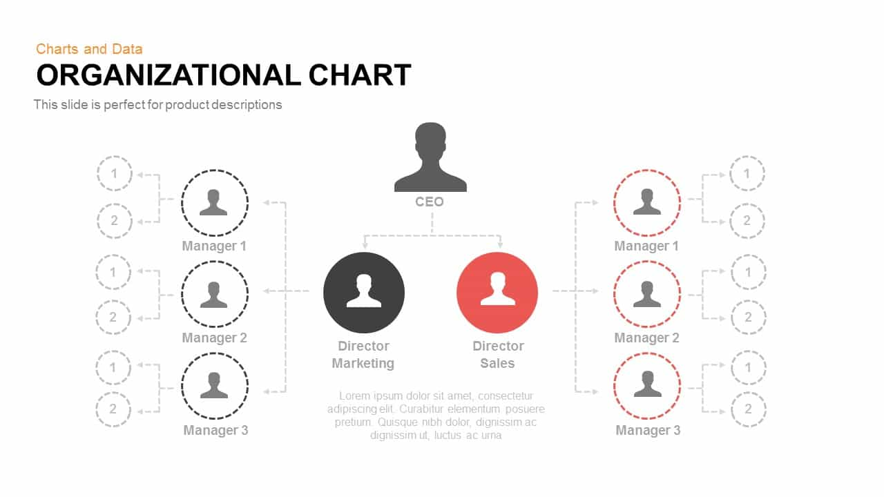 Organizational Chart Powerpoint Template And Keynote Slide Slidebazaar