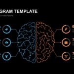 Brain Diagram Template