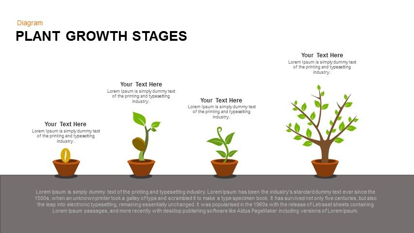 Inner Growth » Plant Care Guide and Identification